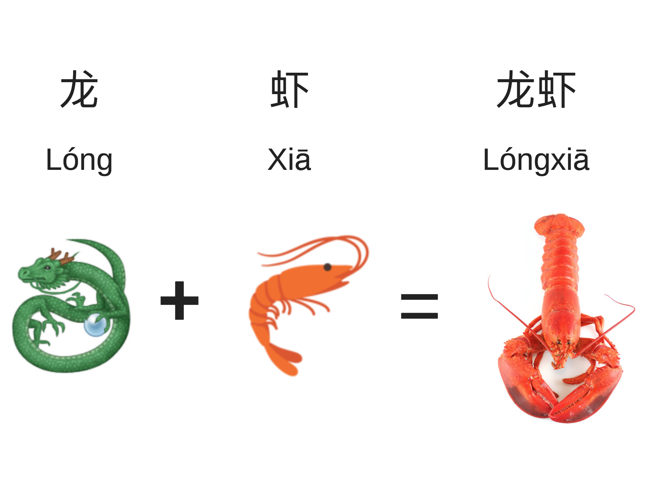 Longxia_Chinese_Animal_Names-2.jpg