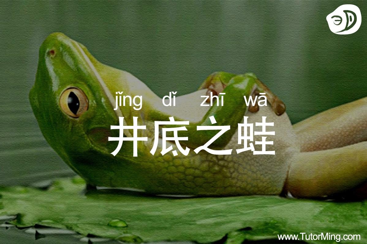 jing_di_zhi_wa.jpg