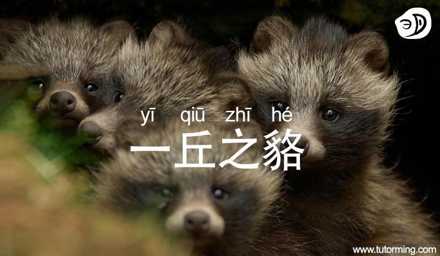 yi-qiu-zhi-he.jpg
