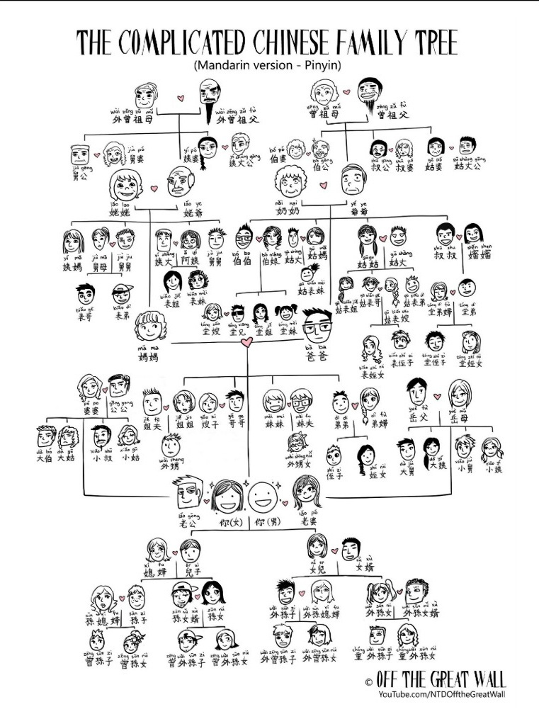 The VERY Complicated Chinese Family Tree – Kinship Diagram Template